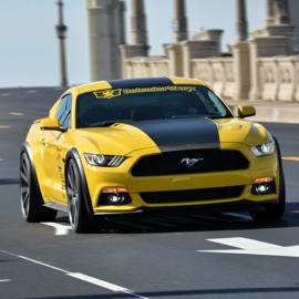 2015-17 Mustang (Defenderworx) Styling
